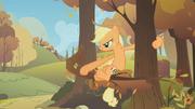 S01E13 Applejack chce wystrzelić siebie z gałęzi
