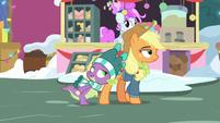 Spike asks about AJ's Hearthswarming Helper MLPBGE