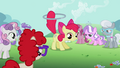 Apple Bloom about to perform a trick S2E06.png