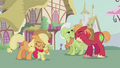 Apple family proud of Apple Bloom S5E18.png