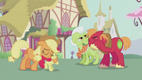 Apple family proud of Apple Bloom S5E18