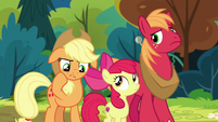 Applejack -I haven't seen him in ages- S7E13
