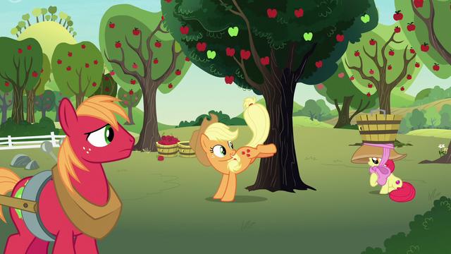 File:Applejack bucking an apple tree S7E9.png