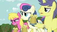 Bon-Bon and two BG ponies 3 S2E15
