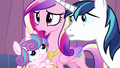 "Cadance ""Including the Crystal Empire!"" S6E2.png"
