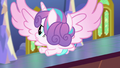 Flurry Heart looking around for Twilight S7E3.png