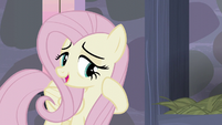 Fluttershy -They've been so welcoming and friendly- S5E02