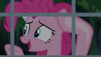 Pinkie Pie -she was just stretching- S7E18