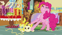 Pinkie Pie trying to unstick the Cake twins S7E19