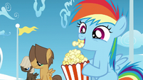 Rainbow, Dumb-Bell, and Hoops watch Twilight and Starlight S5E26