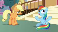 "Rainbow ""none of us did any better"" S8E18"