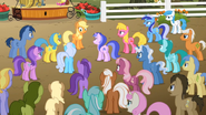 S02E15 Kucyki skarżące się Applejack
