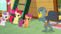 Scootaloo telling Gabby what Twilight said S6E19