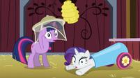 Twilight and Rarity gasp S03E09