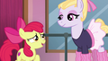 Apple Bloom asks to enroll in Hoofer Steps' class S6E4.png