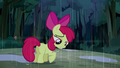Apple Bloom listening to her friends S5E6.png