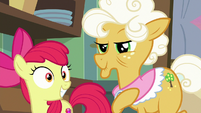 Apple Bloom starts getting excited S9E10