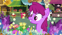 Berryshine sees flowers that she likes S7E19