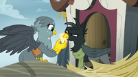 Female griffon snatches her mail from Gabby S6E19