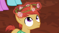 Flower crown placed on villager colt's head S7E16