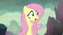 "Fluttershy ""are those bongo drums?"" S9E9"