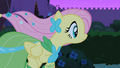Fluttershy galloping 2 S01E26.png