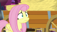 Fluttershy scared by the thought of the maze S5E21