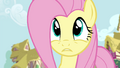 Fluttershy tries to get the attention of Twilight and RD for 2nd time S4E21.png