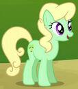 Mint Cupcake ID
