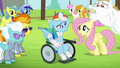 Ponies gather around Rainbow Dash S4E10.png