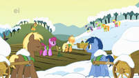 Ponies listen to Applejack S1E11