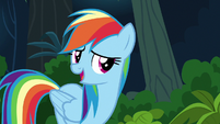 "Rainbow Dash ""I'm not the one who can"" S6E13"