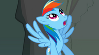 Rainbow Dash looking up S2E07