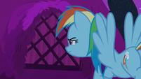 Rainbow Dash peeks into a pony's window S6E15