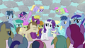 Rarity getting mobbed S3E13.png