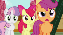 Scootaloo --you know what, Gabby--- S6E19