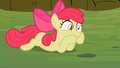 Apple Bloom realizes she is in pain S2E06.png