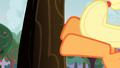 Applejack bucks a tree S3E08.png