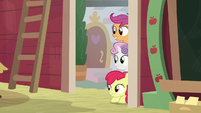 Cutie Mark Crusaders watch Applejack's class S8E12