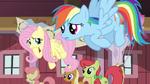 Fluttershy Rainbow worried S02E14