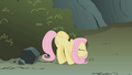 Fluttershy with locked up wings S01E07.png