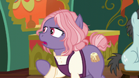 Matronly Pony --I own The Bake Stop-- S6E12