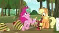 Pinkie knocks over Applejack's baskets as she runs through S7E11.png