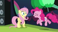 Pinkie startles Fluttershy S5E24