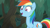 "Rainbow Dash ""our friends are fine"" EGSB"