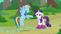 "Rainbow Dash ""the book you just read!"" S8E17"