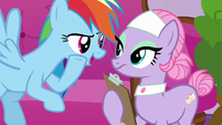 Rainbow Dash whispering to Spa Pony S6E10