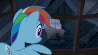 Rainbow peeks into another pony's window S6E15
