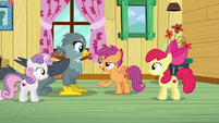 Scootaloo --being good at something-- S6E19