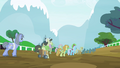 Several ponies walking S4E20.png